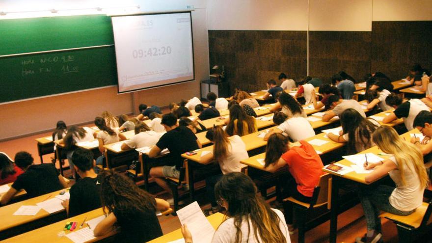 Cuatro alumnos de la UMH de Elche presentan los primeros TFG interdisciplinares