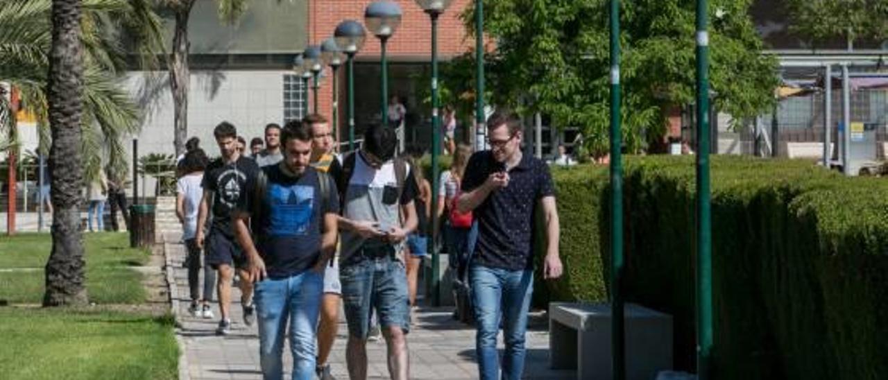 Alumnos en el campus de Elche de la Universidad Miguel Hernández.