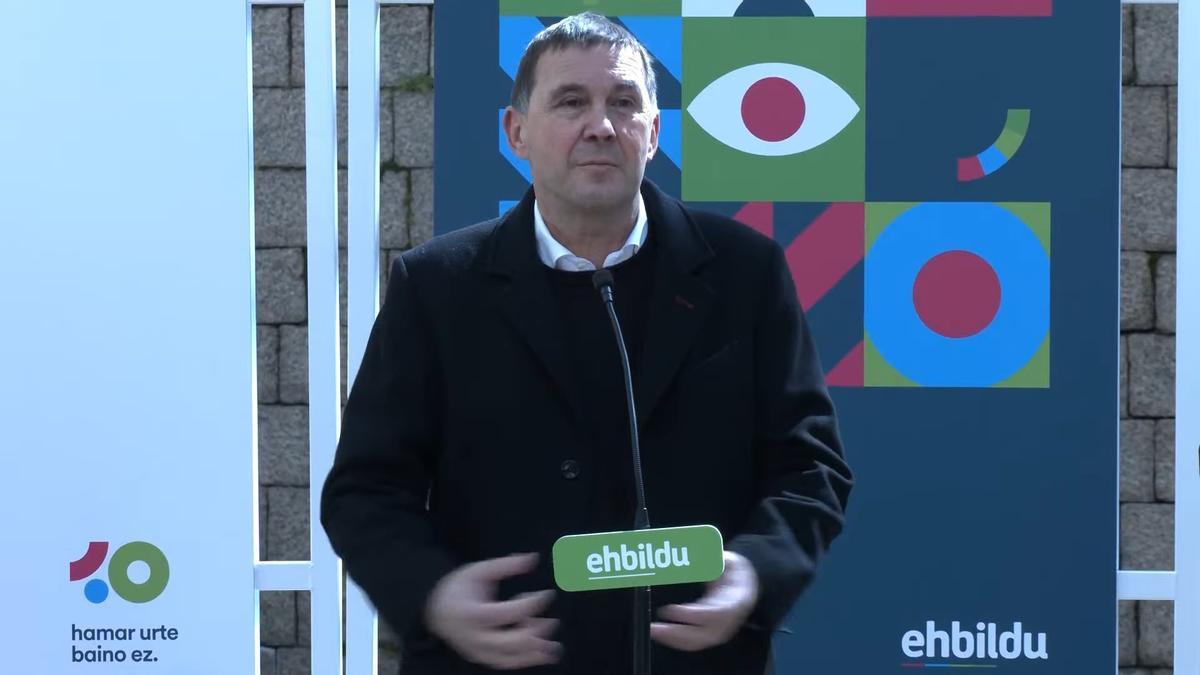 El dirigente de EH Bildu, Arnaldo Otegi.