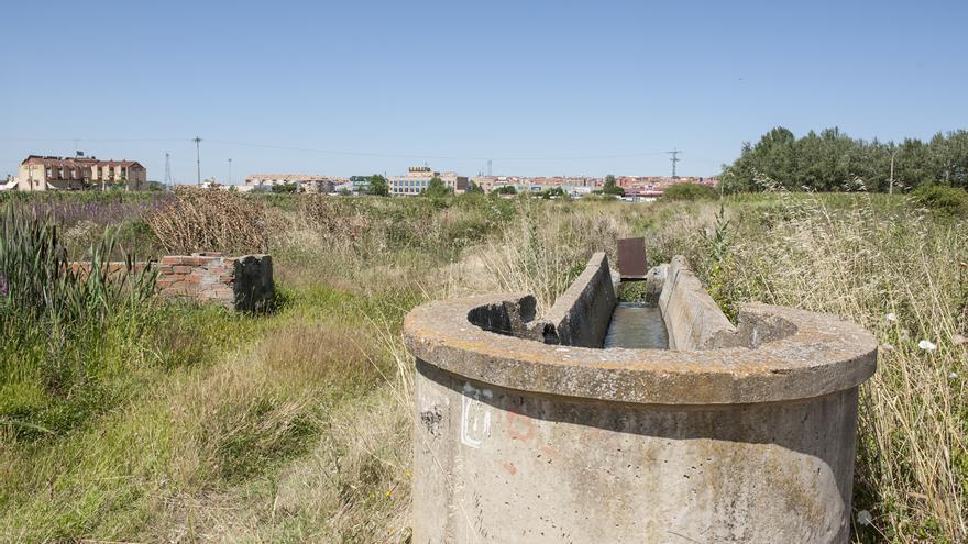Benavente arrendará con fines agrícolas más de 100 hectáreas de suelo