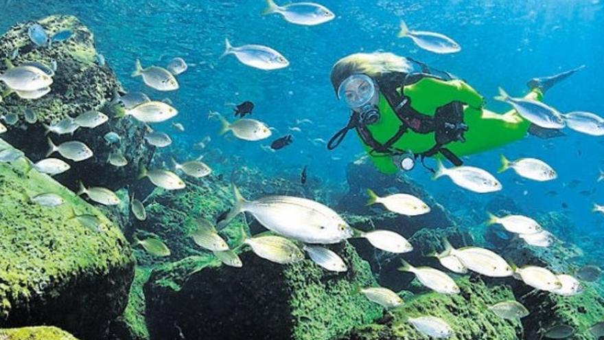 La perla submarina del Sureste