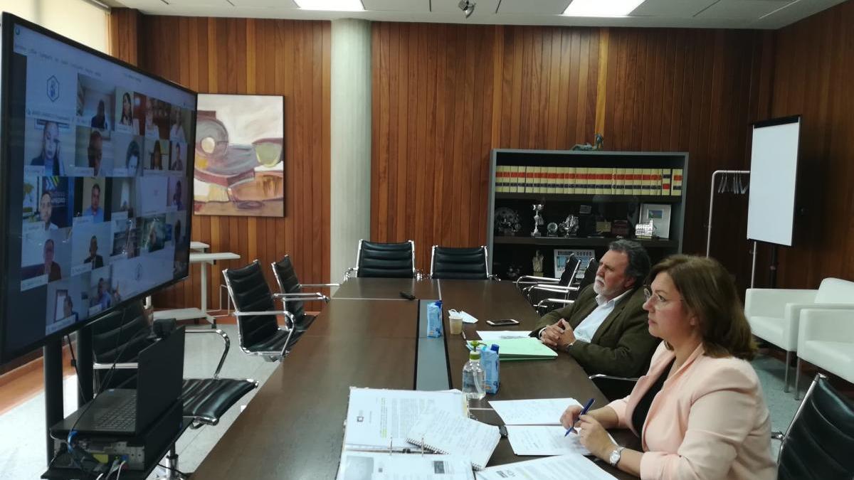 La alcaldesa, Visitación Martínez, mira la pantalla para proceder al Pleno telemático.