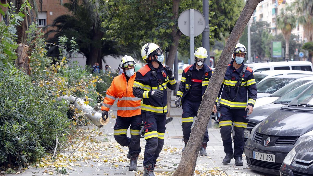 Intervención de los bomberos de València en la Avenida de la Plata.