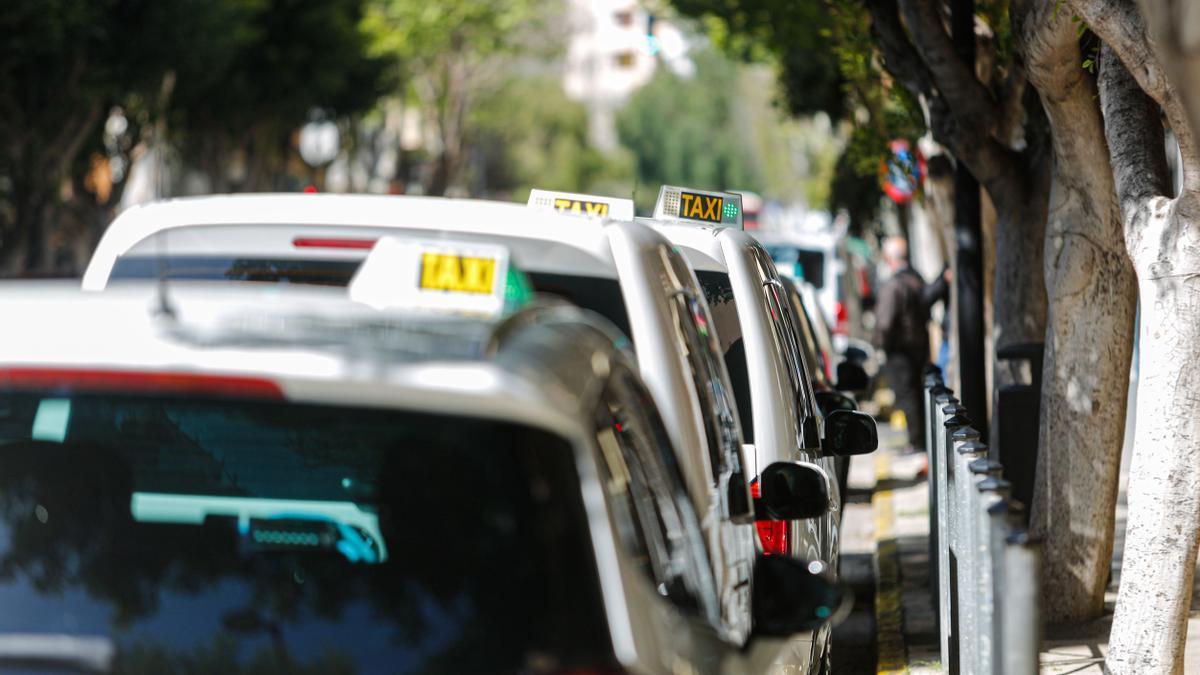 varios taxis en fila en una parada del centro de Ibiza.