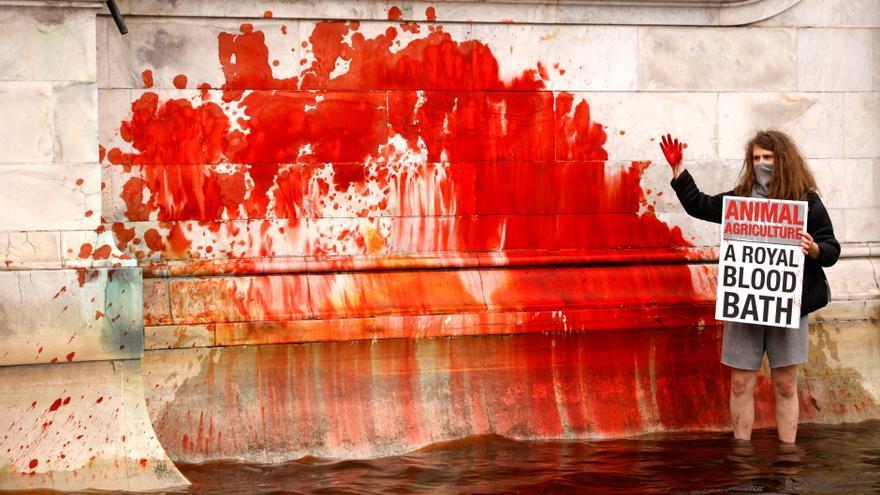 Animalistas tiñen de rojo la fuente del palacio de Buckingham