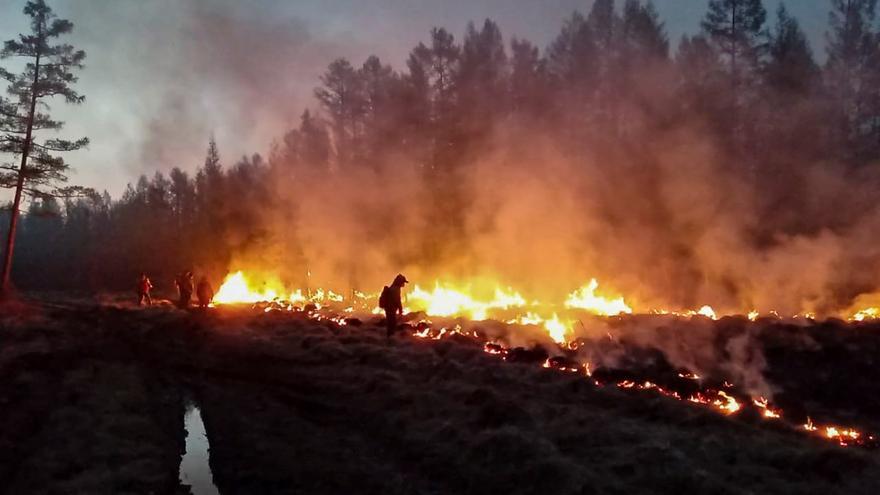 Aumenta el número de incendios forestales en Siberia
