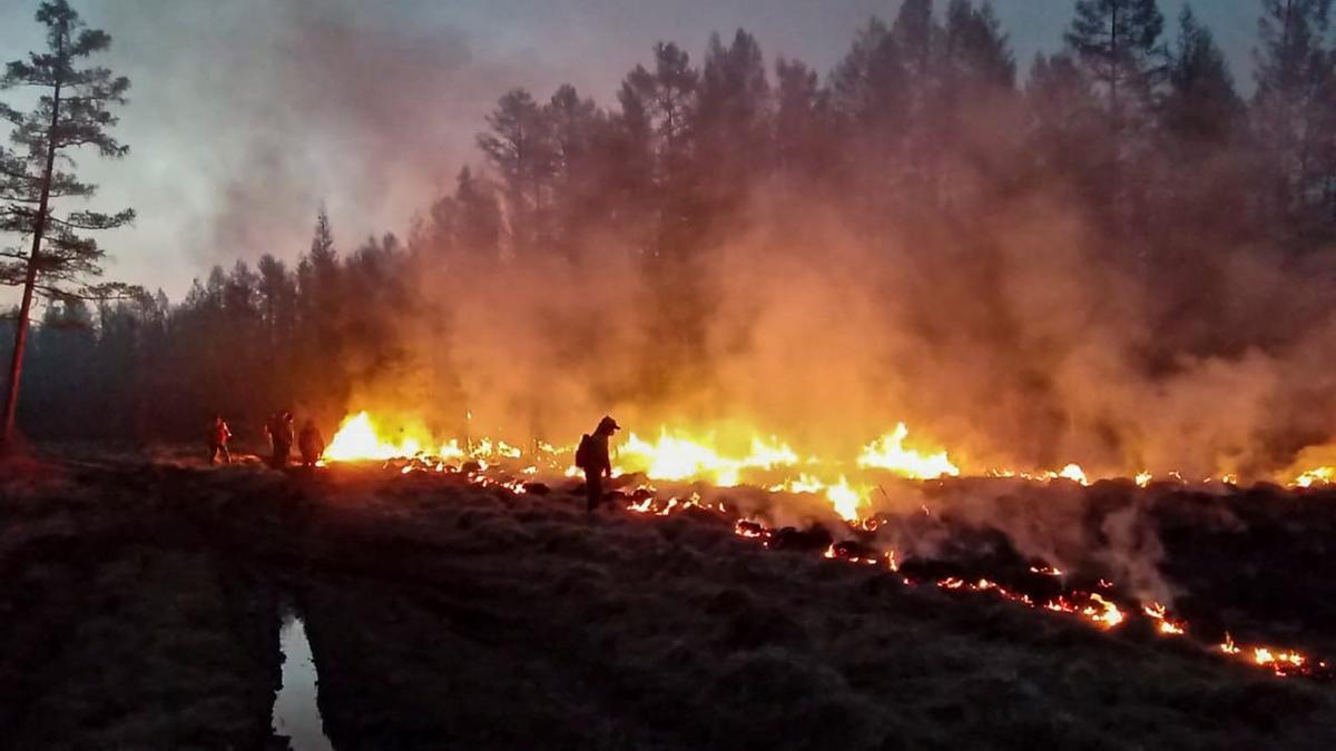 Aumenta el número de incendios forestales en Siberia.