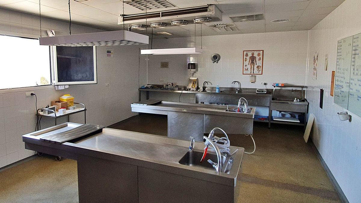 Sala de autopsias donde realizan su trabajo los forenses del Instituto de Medicina Legal de Alicante.