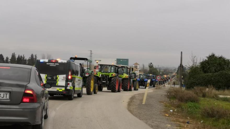 Dcoop también apoyará las protestas de los agricultores de Jaén y Sevilla