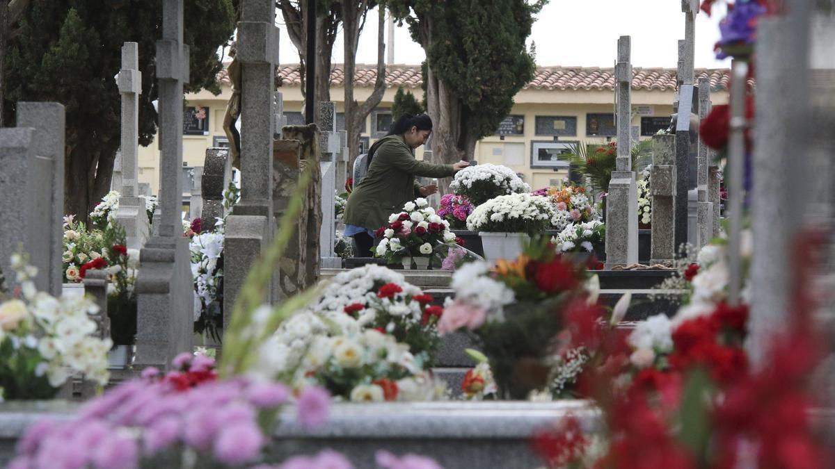 Cementerio San Atilano.