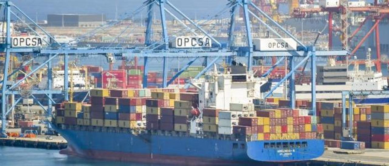 Un buque opera en la terminal de Opcsa, el pasado mes de marzo.