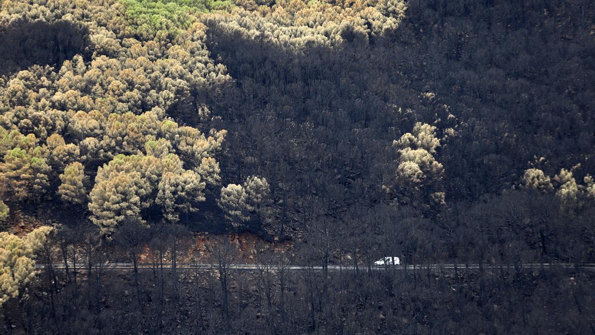 Un vehículo pasa por el Paraje de Peñas Blancas por la carretera hacia Genalguacil.