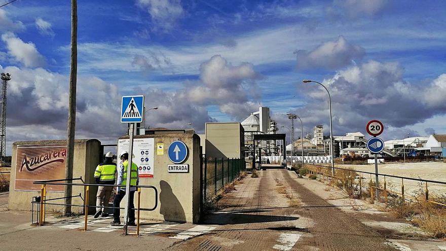 La Azucarera de Toro iniciará el lunes la campaña y molturará 380.000 toneladas