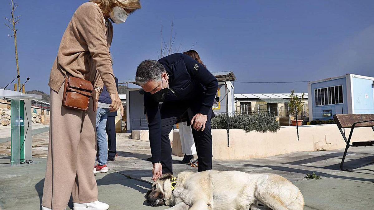Elías Bendodo acaricia a un perro, acompañado por Esperanza Oña, ayer en la Protectora.