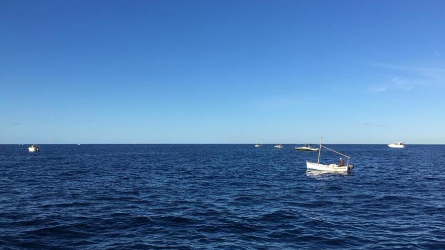 La fiebre por el 'raor' se desata en Mallorca