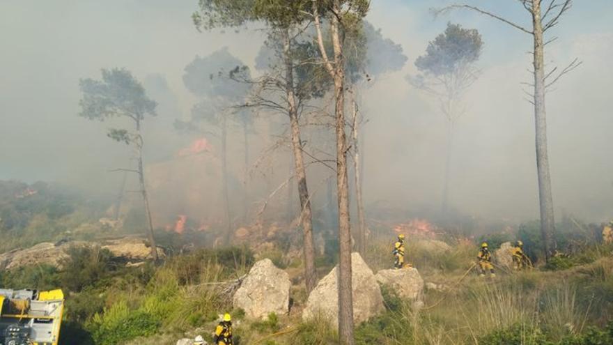 Controlado el incendio del Coll de sa Gramola tras quemar más de seis hectáreas de pinar