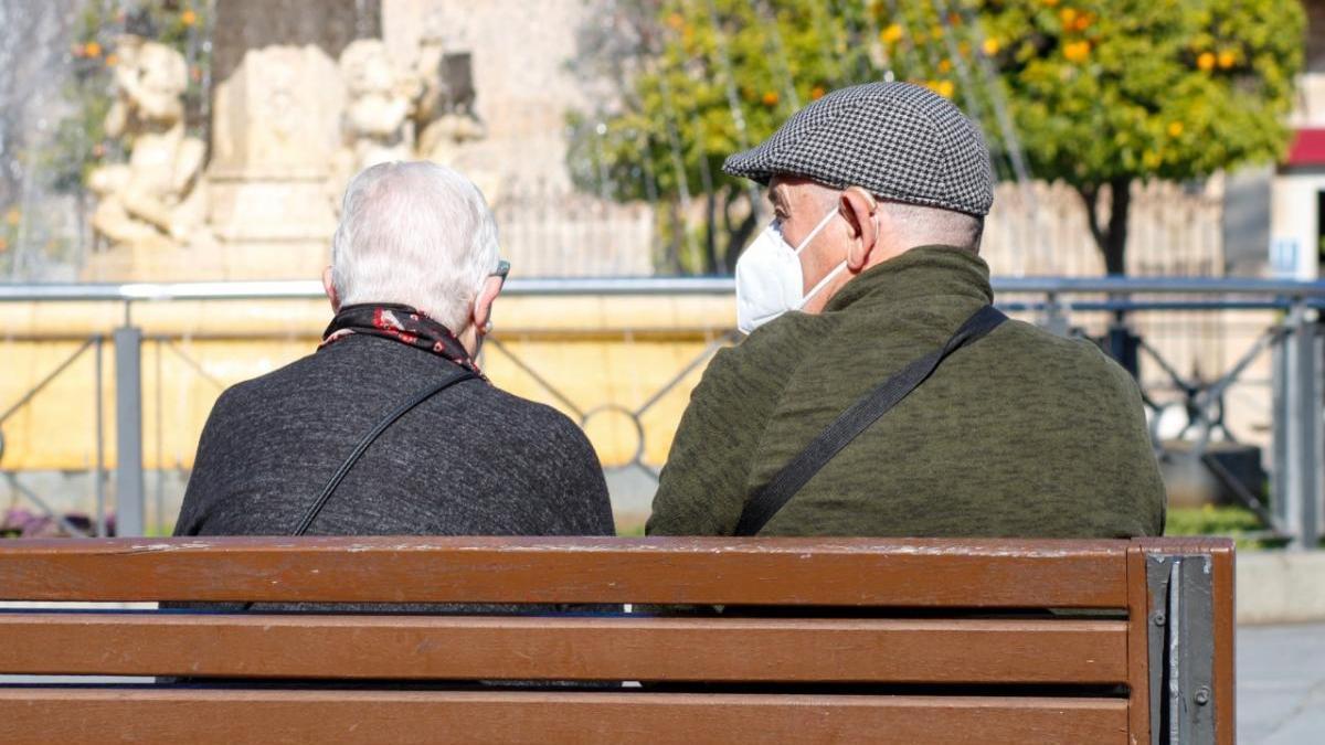 Idean un programa para acompañar a los mayores