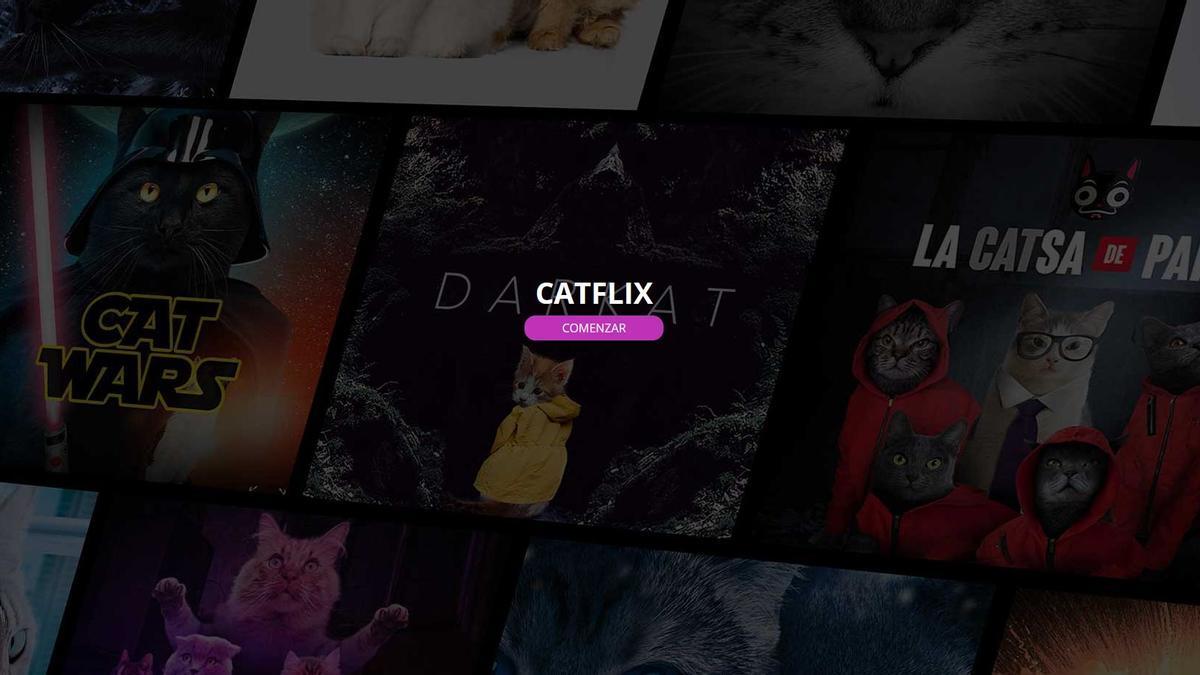 Pàgina inicial de la plataforma Catflix