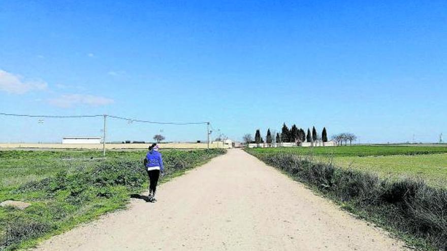 """El PP de Toro reclama el asfaltado e iluminación del acceso al campo de fútbol """"Quinto centenario"""""""