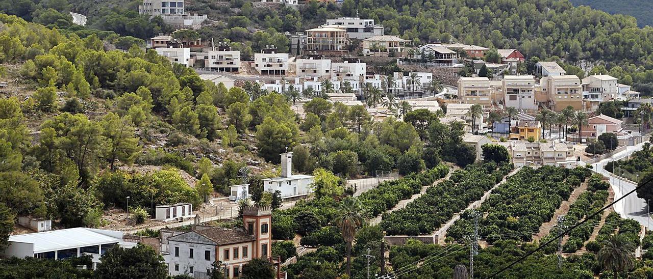 Una perspectiva de la urbanización El Racó de Alzira. | V. M. PASTOR