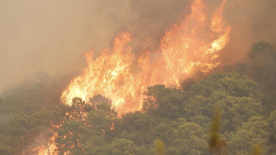 El incendio de Sierra Bermeja afecta a unas 3.600 hectáreas