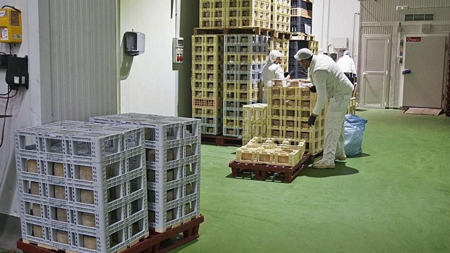 El tarifazo eléctrico amenaza con acabar con las reservas del tejido empresarial zamorano