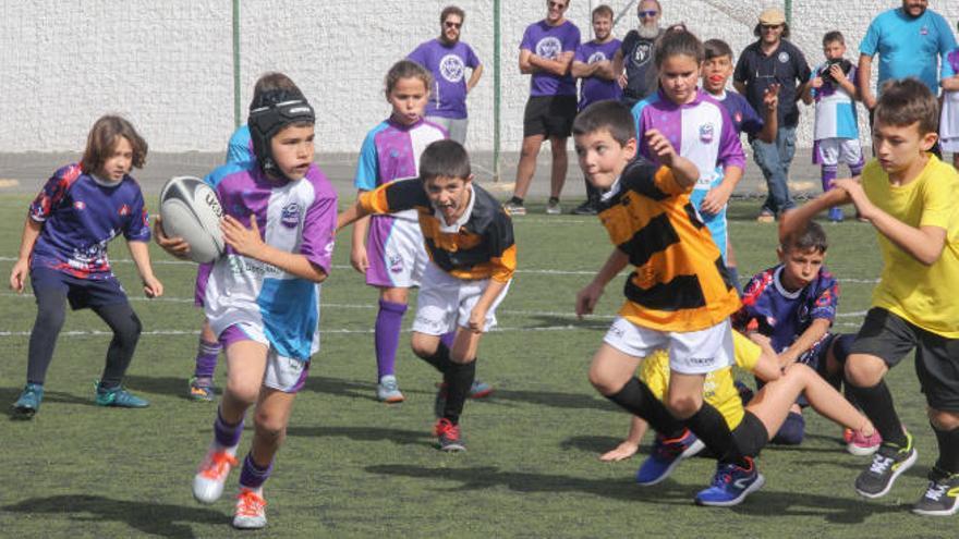 En la búsqueda de revitalizar el balón oval en Canarias