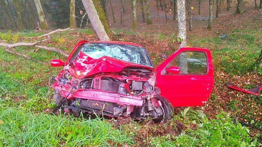 Herido un conductor tras caer con el coche por un desnivel e impactar contra un árbol