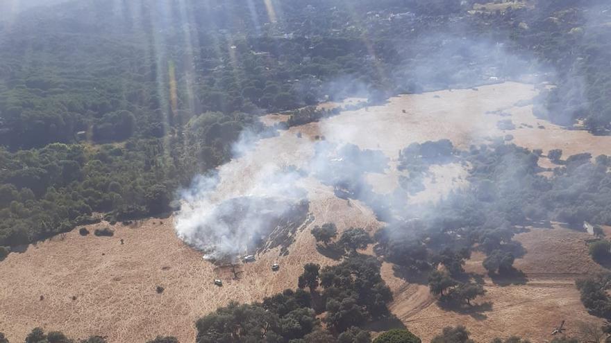 Extinguido un incendio forestal en Trassierrra
