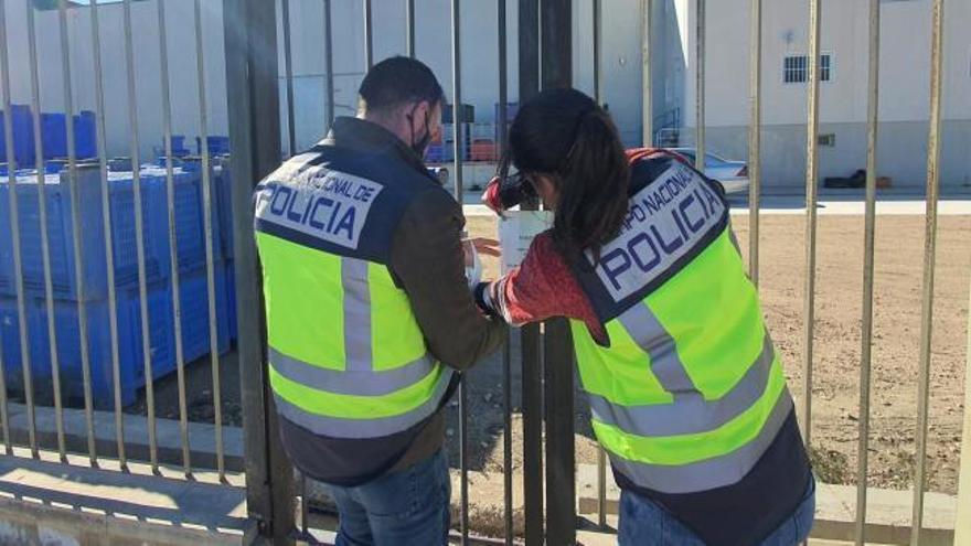 Detenido en Murcia un empresario agrícola por explotación laboral