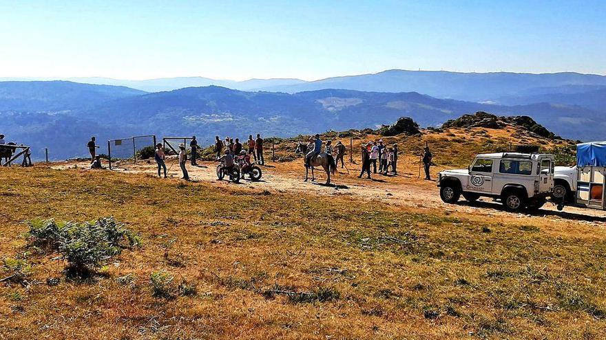 Sabucedo continúa adelante con un día de labor de control de las manadas en el monte