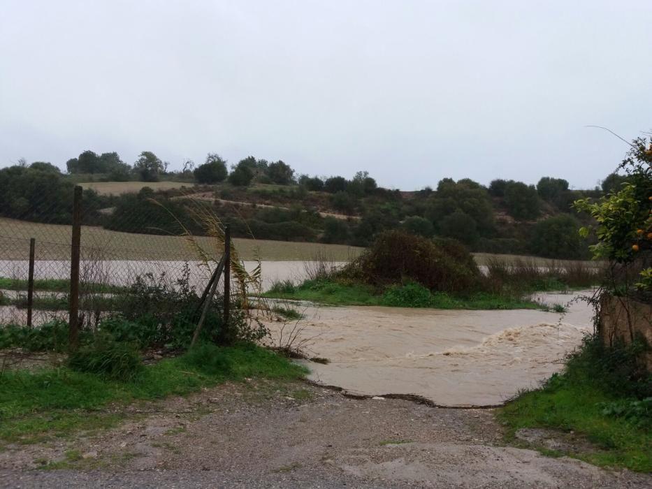 In Sant Llorenç trat am Samstag (21.1.) der Sturzbach über die Ufer.