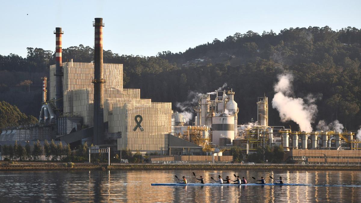 Vista de la biofábrica de Ence.
