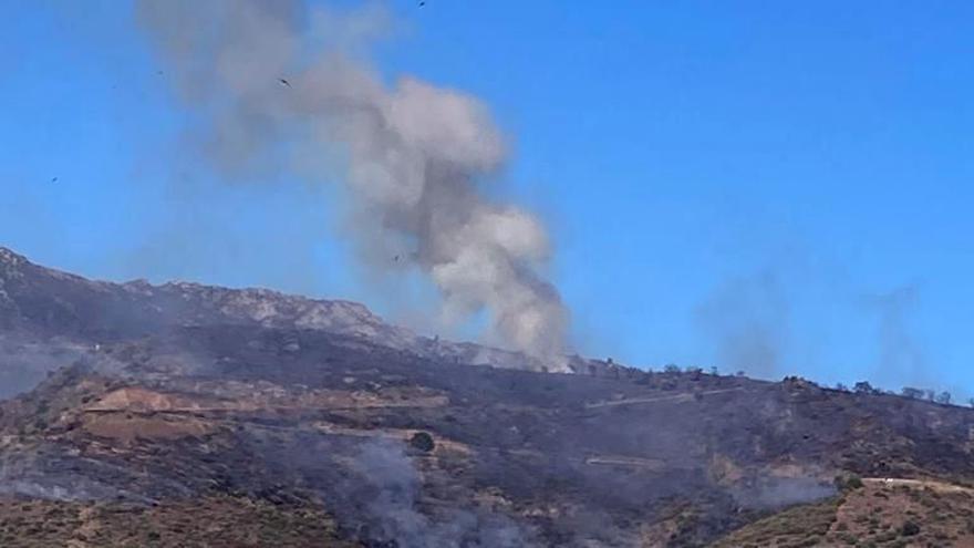 Una columna de fum de l'incendi de Llançà vist des del Port de la Selva, el 17 de juliol del 2021 (Vertical).