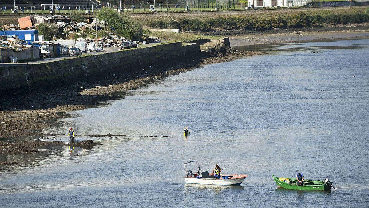 Mariscadores en la ría de O Burgo, con el asentamiento de A Pasaxe al fondo
