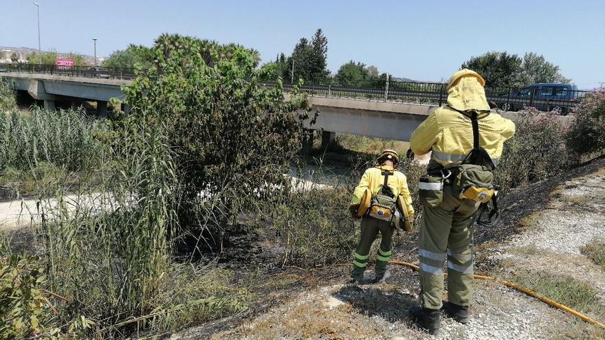 Intentan controlar un incendio a orillas del río Segura