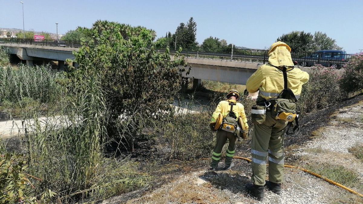 Imagen del incendio del río Segura.