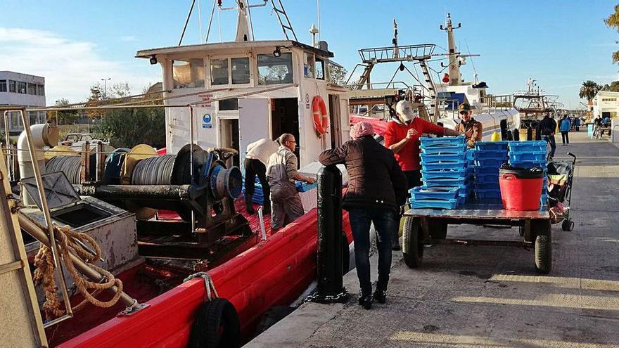 """Los pescadores valencianos agotan la cuota de 8.700 kilos del atún rojo """"en solo 12 días"""""""