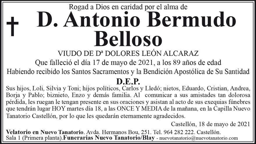 D. Antonio Bermudo Belloso