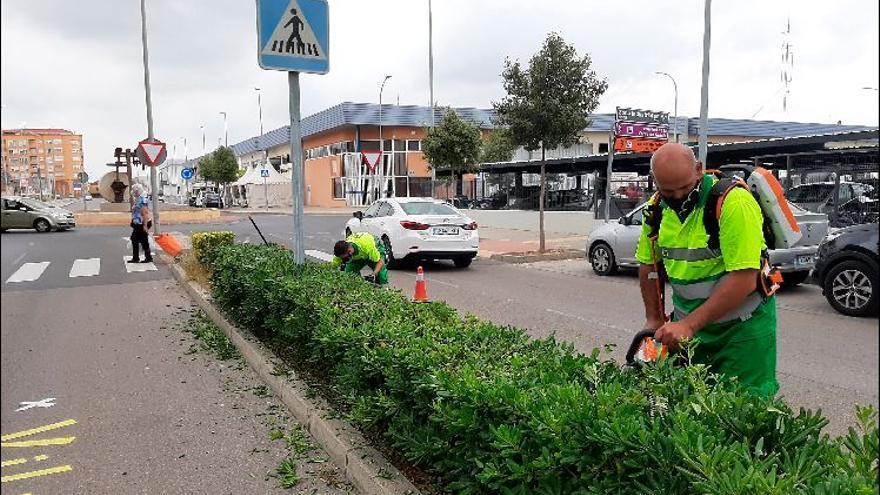 Vila-real activa los contratos de jardinería y arregla las áreas verdes