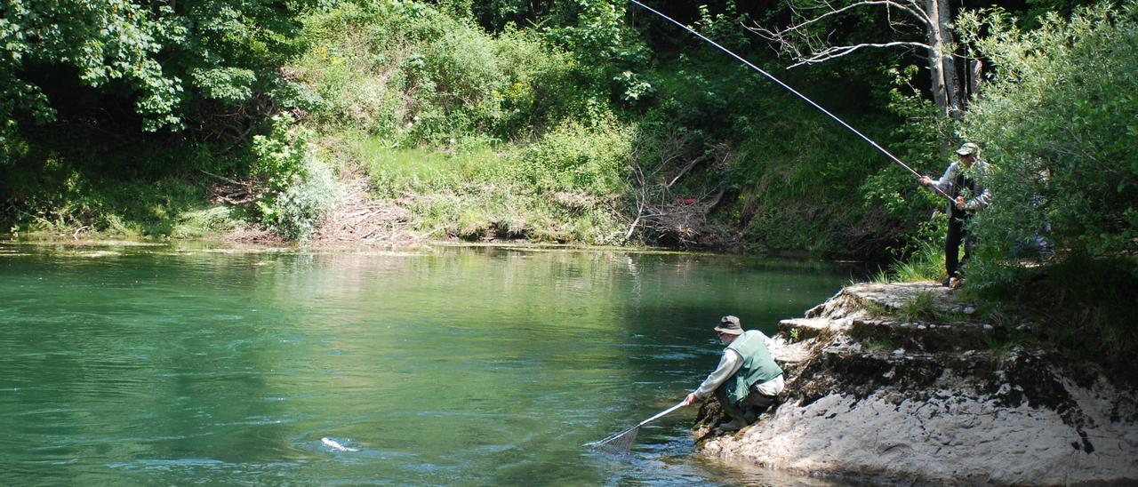 Pesca del salmón en el Cares