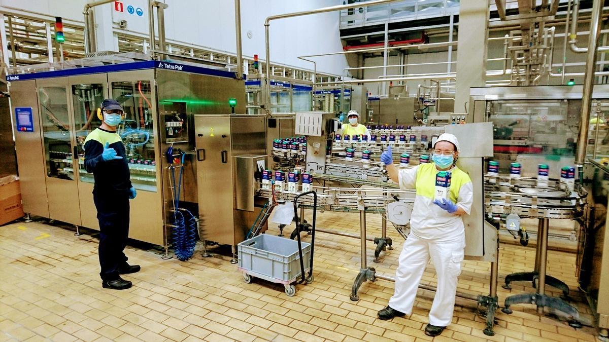 Envasado de leche en una planta de Pascual.