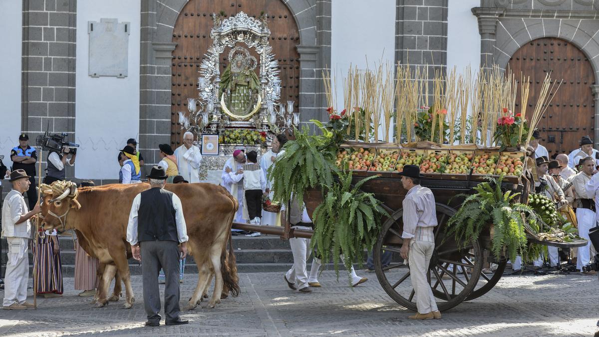 Última Romería del Pino, celebrada en 2019