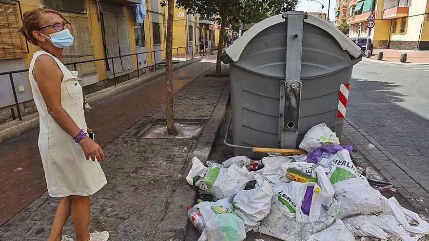 Más civismo y limpieza, claves para erradicar las plagas en la Zona Norte de Alicante
