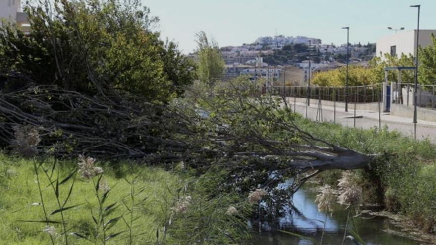 Adiós 'veroño' en Castellón con vientos de 104 km/h y desplome de temperaturas