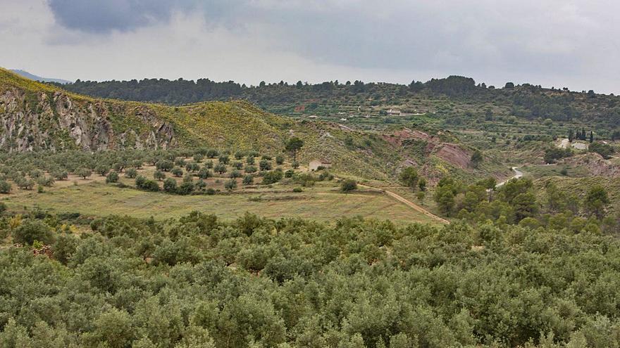 Las plantas solares de Chella y Bolbaite ocupan suelo protegido