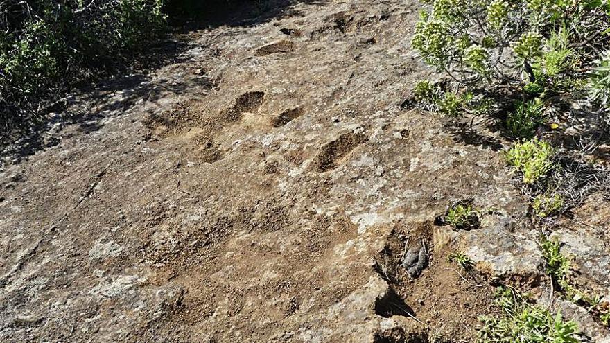 Atentado arqueológico contra un grupo de cazoletas aborígenes