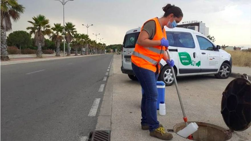 Paterna detecta rastros de cepa británica en sus aguas residuales