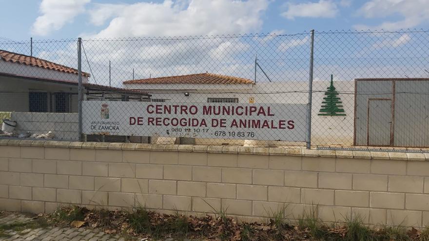 Ciudadanos Zamora reclama celeridad para las obras de la nueva perrera municipal
