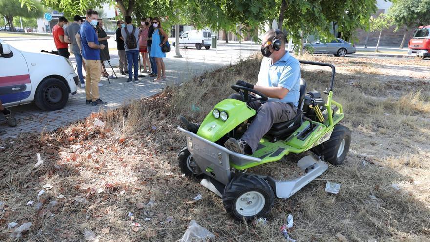 Elche convertirá los restos de poda en sustrato para resolver el problema de la «basura verde»